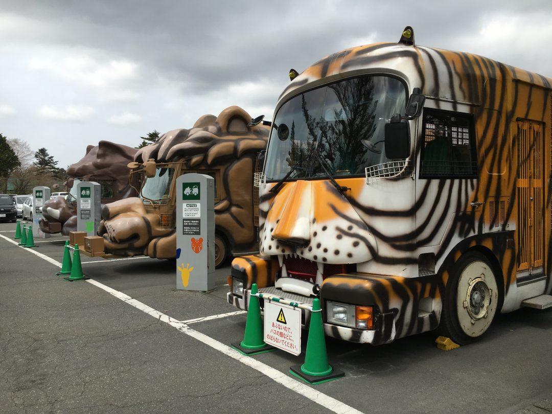 fujisafari-junglebus